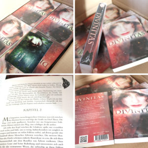 Die Taschenbücher von Divinitas